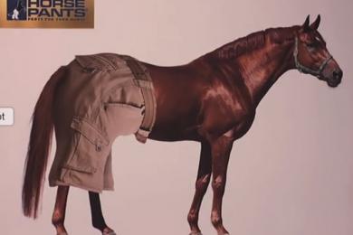 Imagen capturada del video en youtube.