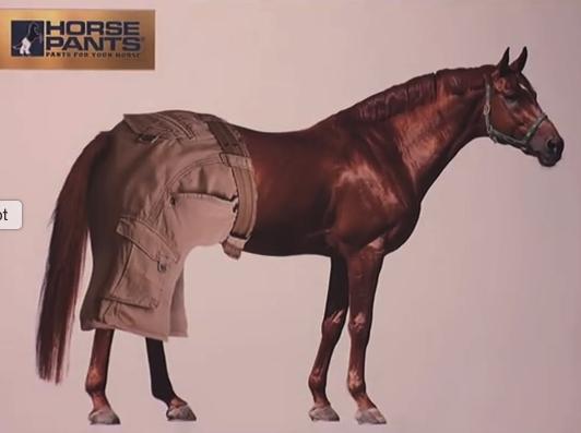 No hay ideas tontas, solo buenas oportunidades! Pantalones para caballos! Increíble…